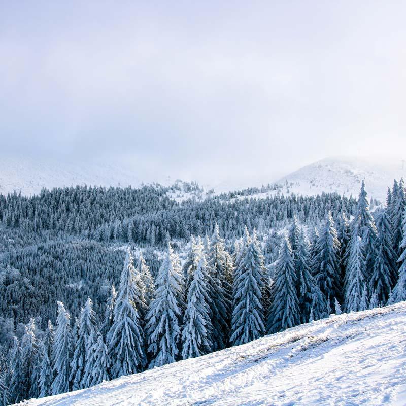 Zillertaler Berge